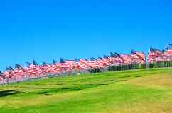 American flags on a field Royalty Free Stock Photos