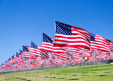 American flags on a field Stock Photo