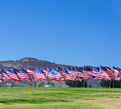 American flags on a field Royalty Free Stock Photography