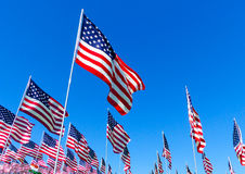 American Flags. Field of American flags blowing in the wind with a blue sky Royalty Free Stock Image
