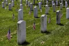 American Flags on Grave Sites at Arlington National Cemetery on Memorial Day Royalty Free Stock Photos