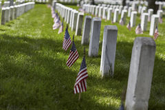 American Flags on Grave Sites at Arlington National Cemetery on Memorial Day Royalty Free Stock Images