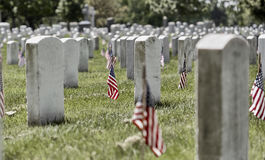 American Flags on Grave Sites at Arlington National Cemetery on Memorial Day Royalty Free Stock Photography