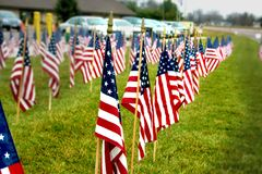 American Flags lined up in rows. American Flags lined up in recognition of veterans soldiers Memorial Day, Independence Day, Fourth of July holidays Royalty Free Stock Photos