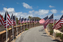 American flags. Memorial Day, Independence Day and Veterans Day Stock Images