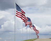 American flags of a memorial for veterans flying in the breeze Royalty Free Stock Images