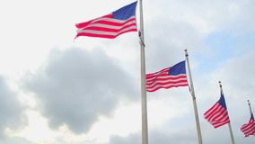 American Flags stock video