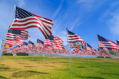American flags. Multiple American (and other nations) flags planted in field representing the nationalities of the victims of the September 11th terrorist royalty free stock image