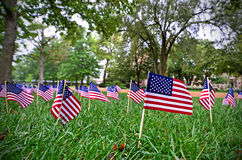 American Flags. Numerous American flags in a field Royalty Free Stock Photography