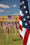 American flags in a park. American flags flying in a grassy park or field Royalty Free Stock Image