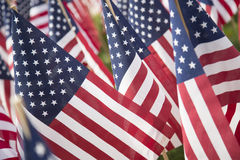 American Flags. Photograph of rows of waving American flags stock images