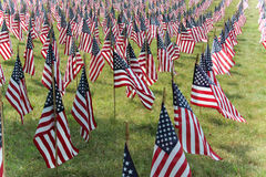 American flags. In a row on a field of green grass Royalty Free Stock Photography