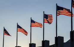 American flags. Six American flags waving in the wind Royalty Free Stock Photography