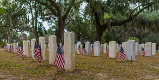 American Flags at Soldiers Graves royalty free stock image