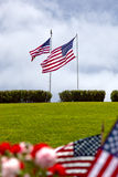 American Flags at United States National Cemetery Royalty Free Stock Photos