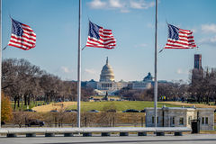 American Flags with US Capitol on background - Washington, D.C., USA Stock Photos