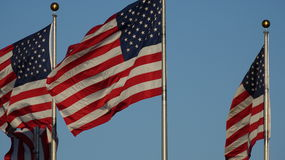 American Flags Or US Flags Stock Photo
