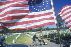 American Flags and Visitors at Los Angeles Cemetery, California Royalty Free Stock Images