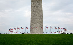 American flags in Washington Stock Photography