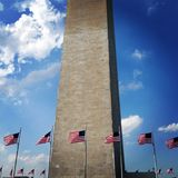 American Flags at Washington Monument Royalty Free Stock Photo