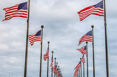 American Flags Waving Stock Photo