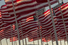 American flags waving at sunset Royalty Free Stock Photos