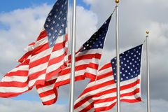American flags in the wind Stock Photo