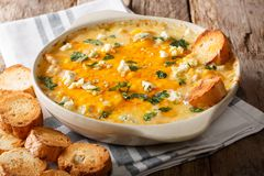 American food: hot chicken buffalo dip close-up in a baking dish Royalty Free Stock Photos