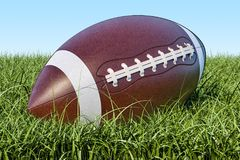 American football ball in the grass, 3D rendering. American football ball in the grass, 3D Royalty Free Stock Photo