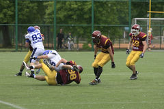 American Football Match Between Wolves And Blue Dragon Stock Images