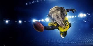 Furious elephants team . Mixed media Royalty Free Stock Image