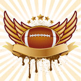 American football and wing. American football and wing Royalty Free Stock Images