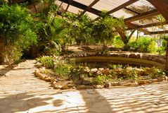 American garden Seville Royalty Free Stock Image