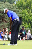 American golfer Tiger Woods. Prepares to put the ball at the country clubs PGA golf event Royalty Free Stock Images