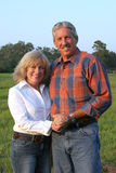 American Gothic Royalty Free Stock Photography