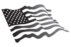 American grayscale Stock Images