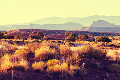 American landscapes Royalty Free Stock Photography