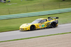 American Le Mans Series Road America. Elkhart Lake, Wisconsin, USA - August 11, 2013: The #4  Chevrolet Corvette of the Corvette Racing team during the American Stock Image