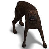 American Mastiff Dog. 3D rendering with clipping. Path and shadow over white Royalty Free Stock Photos