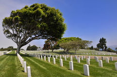 American military cemetery at Point Loma Stock Photos