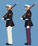 American Military. Marine with Rifle on Shoulder Standing at Attention Stock Image