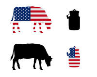 American milk cow Stock Photography