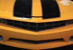 American Muscle stock image