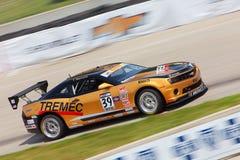 American Muscle Car 2013 Detoit Grand Prix Stock Photography