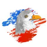 American National Bird Eagle for 4th of July. American National Bird Eagle on Flag colors abstract background for 4th of July, Independence Day concept Royalty Free Stock Image