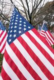 American national flags in historic  Park Square park Stock Photos