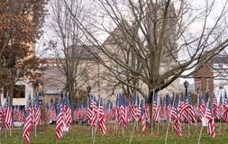 American national flags in historic  Park Square park Royalty Free Stock Images