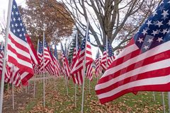 American national flags in historic  Park Square park Stock Image
