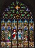 American national standard de Mechelen - de Jésus sa mère. Vitre de cathédrale de St Rumbold Photos libres de droits