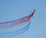 60 american national standard Patrouille de France Photo libre de droits